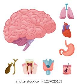 bitmap illustration of body and human sign. Set of body and medical stock bitmap illustration.