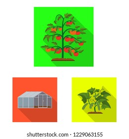 bitmap illustration of greenhouse and plant icon. Collection of greenhouse and garden stock bitmap illustration.