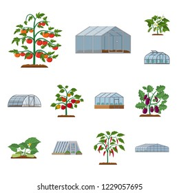 bitmap illustration of greenhouse and plant symbol. Collection of greenhouse and garden bitmap icon for stock.