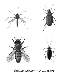 Bitmap illustration of insect and fly logo. Collection of insect and element stock bitmap illustration.