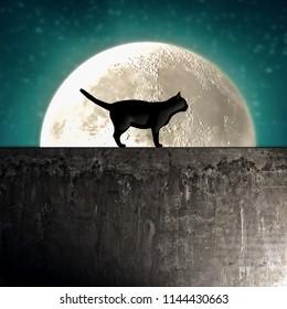 black cat silhouette on a concrete wall 3d illustration