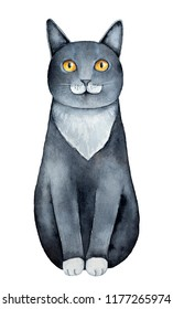 Black cat with white chest and paws, big yellow golden eyes and funny face moustache markings. Sitting pose, front view, one single character. Hand drawn watercolour graphic painting, cut out element.