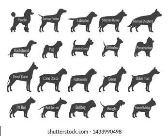 Black dog breeds silhouettes isolated on white background. Profile of poodle and labrador, siberian husky and shepherd, dachshund and pug illustration