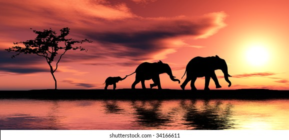 Black elephant silhouettes by a river.