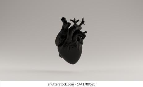 Black Heart Anatomische 3D-Abbildung 3D-Darstellung