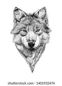 Black Ink Tattoo Composition. Extremely detailed hand drawn portrait. High-contrast black and white wolf's head.