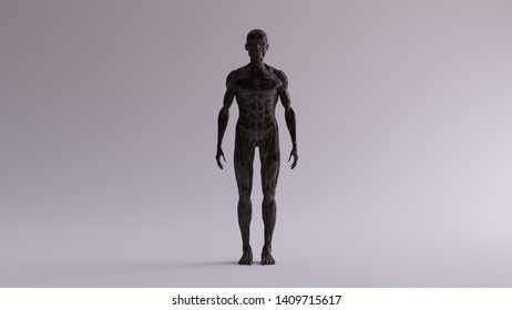 Black Iron Ecorche Muscle and Skeletal System Anatomical Model Front View 3d illustration 3d render