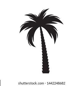 Black  palm tree silhouette.  Illustration
