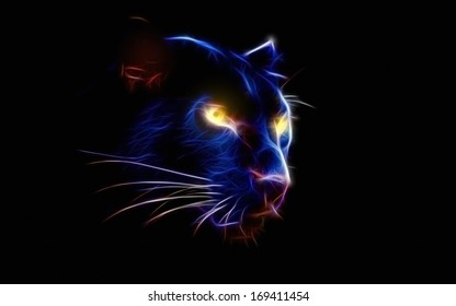 black panther in the dark of the night