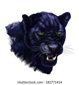 black panther digital painting/ black panther head
