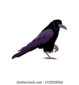 Black raven illustration. Bird, black, mystic. Nature life concept. illustration can be used for topics like nature, animal world, encyclopedia