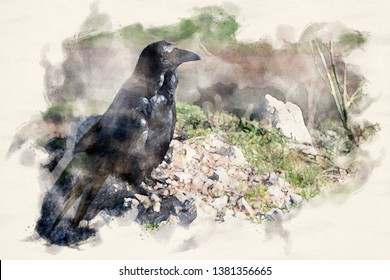 a black raven sitting on a hill in watercolors