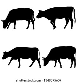 Black set silhouette of cash cow on white background