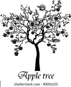 Black silhouette apple tree isolated on White background.  Illustration