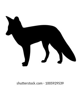 black silhouette of fox on white background of illustration. Raster copy.
