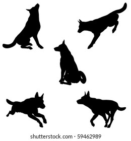 Black silhouettes of an Alsatian (German Shepherd) dog in various poses on a white background - 1