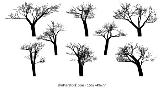 Black silhouettes of naked vector trees. Set isolated on a white background. Rasterized version