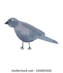 Black simple funny bird, hand drawn watercolor illustration