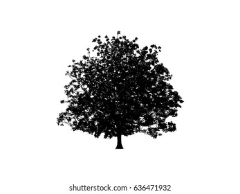 Black Tree silhouette icon for website.Black Tree Illustration.Walnut