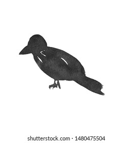 Black watercolor ink raven on a white background isolated, hand-drawn decorative element