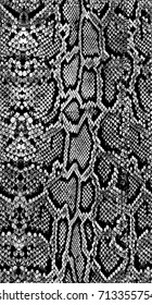 Black and white background in snake pattern style.Seamless pattern