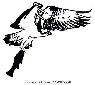 Black and white digital drawing of flying Osprey with fish in talons.