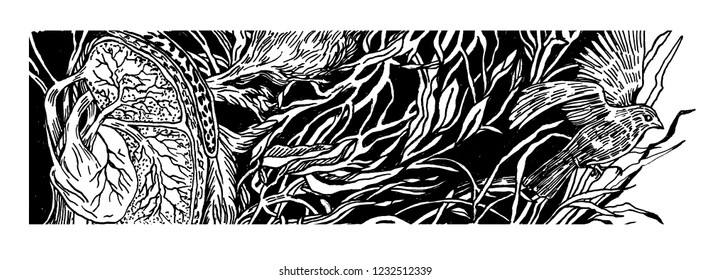 Black and white illustration, banner, for a book or magazine, printed products. Ornament of leaves, branches, herbs and birds.