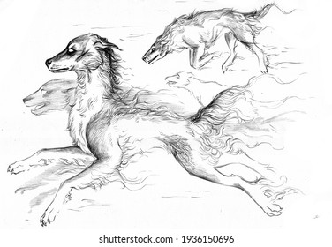 Black and white illustration of  group of running ghost dogs