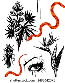 Black and white illustration. Tattoo flashes. Beautiful woman eye, e[otic flower strelizia, red snake,  cockroach.