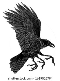 a black and white illustration of a three-legged crow taken from Chinese mythology