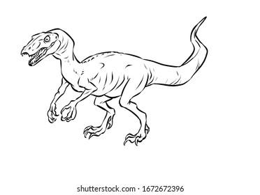 Black and White Line Art Illustration of Eodromaeus, Dinosaur Prehistoric Animal Series