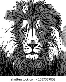 Black and white line effect with lion face illustration image