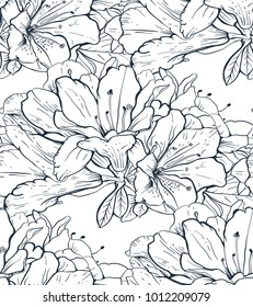 464159 Flower Line Flower Line Drawing Images Royalty Free Stock