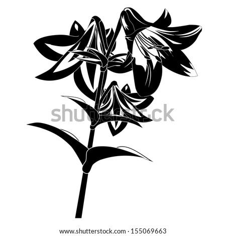 Black white silhouette flower stock illustration 155069663 black and white silhouette of a flower mightylinksfo