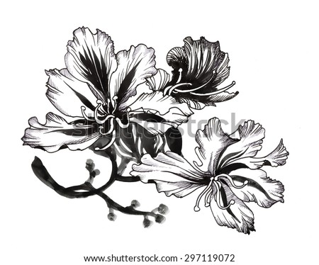 White drawings beautiful flower black pictures picturesboss black and white sketch with painting beautiful flowers illustration jpg 450x374 white drawings beautiful flower black mightylinksfo