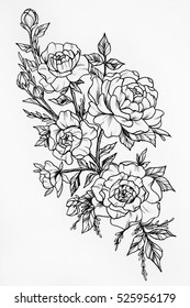 Black and white sketch of the three big beautiful roses