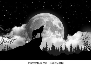 Black and white wolf howling at the moon