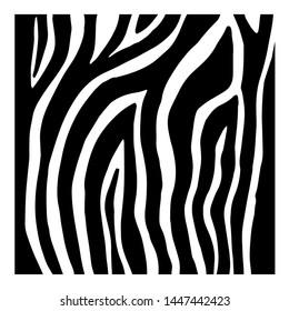 Black and White Zebra Patterns