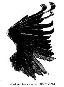 Blackbird Wing