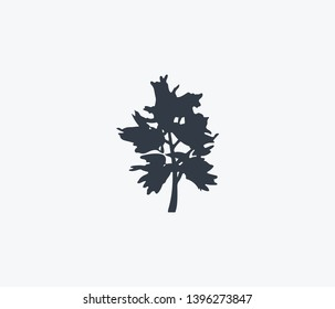 Blackthorn tree icon isolated on clean background. Blackthorn tree icon concept drawing icon in modern style.  illustration for your web mobile logo app UI design.