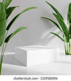 Blank product stand with tropical plants. 3d rendering