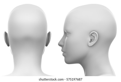 Blank White Female Head - Side and Back view