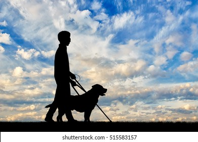 Blind disabled with cane and dog guide walking day. Concept help blind disabilities