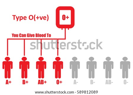 Blood DonationBlood Group Type O Positive Can Give To