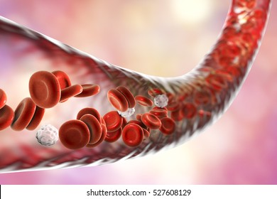 Blood vessel with flowing blood cells, 3D illustration