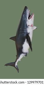 Bloodthirsty shark. 3d illustration