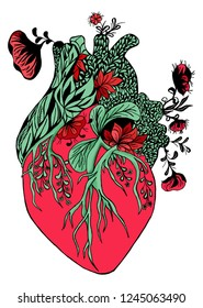Blooming anatomical human heart. hand drawn illustration on white background. Drawing Human heart with flowers and leaves.