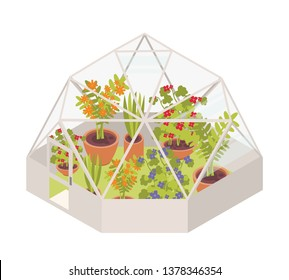 Blooming flowers and potted flowering plants growing inside glass dome greenhouse. Modern glasshouse or orangery isolated on white background. Bright colored illustration in cartoon flat style