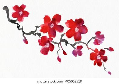 Blooming Sakura. Watercolor.