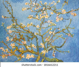 Blossoming Almond Tree. Beautiful oil painting on canvas. Based on the great painting by Van Gogh, 1890. Brush strokes and canvas textures .
